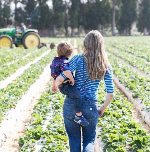 «La terra a chi lavora». Apre la Banca delle Terre Agricole